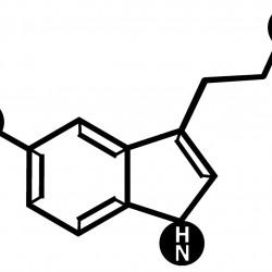 Serotonin Metal Tablo